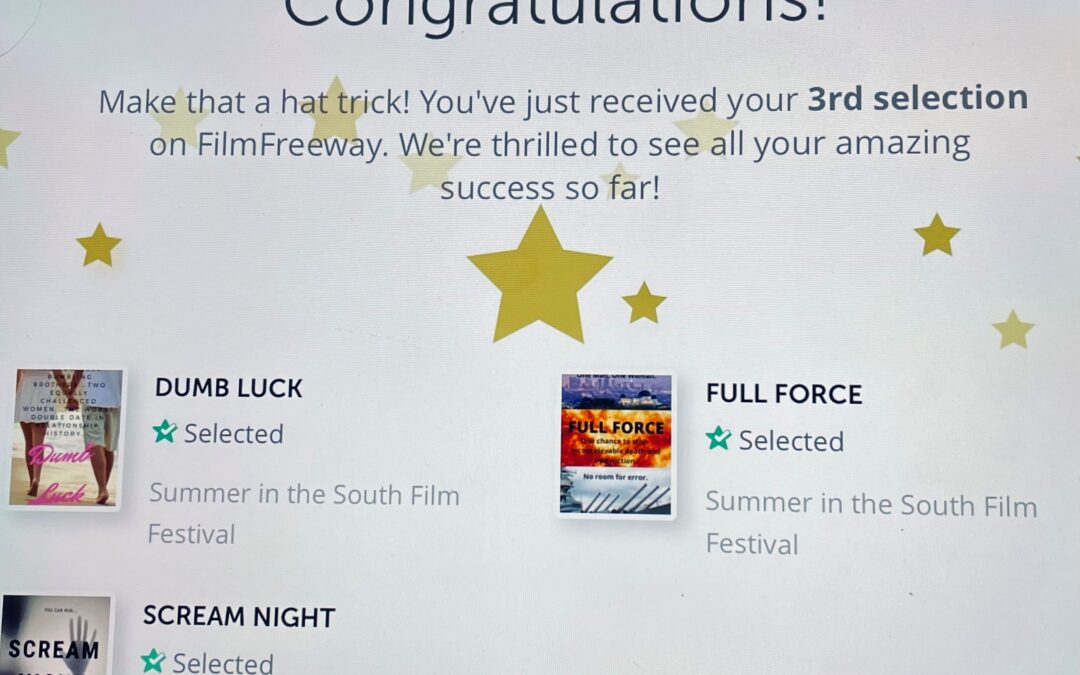 Bruner & Stevens Screenplays Official Selections of Summer In The South Film Festival!!!